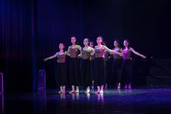 Kollektivismus 8--Tanzdramaesel Wasser erhalten stockfotos