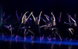 Kollektivismus 12--Tanzdramaesel Wasser erhalten lizenzfreie stockbilder