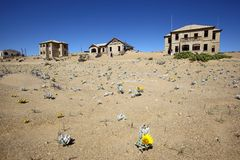Kolmanskop spökstad Royaltyfria Bilder
