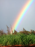 Koloa Rainbow. A vivid rainbow captured in Koloa, Hawaii Royalty Free Stock Photo