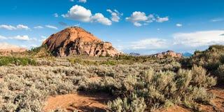 kolob国家公园高原风景视图zion 免版税图库摄影