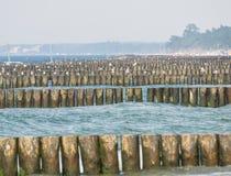 Kolobrzeg beach breakwater Stock Photo