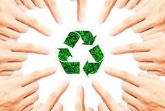 Ökologie Lizenzfreies Stockfoto