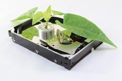 Ökologische Festplatte Stockfoto