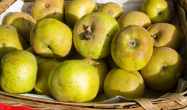 Ökologische Äpfel Lizenzfreies Stockbild