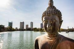 Kolombo Buddha Obrazy Stock