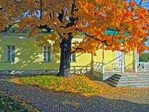 Kolomenskoe公园秋天早晨莫斯科 免版税库存照片