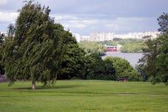 Kolomenskoye-Park Stockbilder