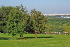 Kolomenskoye-Park Lizenzfreie Stockfotografie