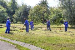 Kolomenskoyepark Het schoonmaken van het gras Royalty-vrije Stock Foto's