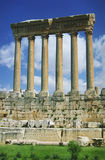 Kolommen in Baalbek Stock Foto