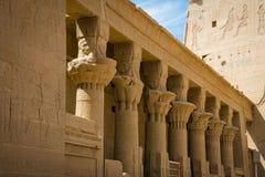 Kolommen in de Tempel van Philae, Tempel van ISIS stock foto's