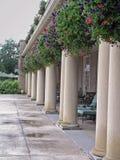Kolommen en bloemen Royalty-vrije Stock Afbeeldingen