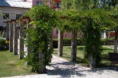 Kolommen in het park in Boekarest stock foto