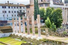 Kolommen Roman Forum Rome Italy Stock Afbeeldingen