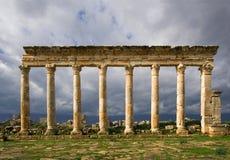 Kolommen van Apamea Syrië Stock Afbeeldingen
