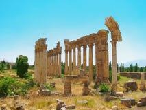 Kolommen van een oude, oude tempel in Libanon Baalaek Stock Afbeeldingen