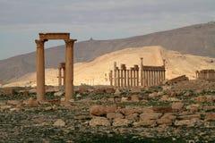 Kolommen van Palmyra Royalty-vrije Stock Afbeeldingen