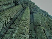 Kolommen van rotsen bij de Verhoogde weg van de Reus stock foto's