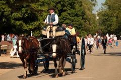 Koloniaal Rider Drives een Wagen stock afbeeldingen