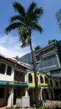 Kolonialhaus Singapour Stockbild
