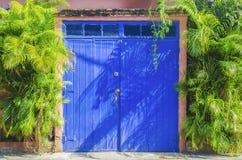 Kolonialni drewniani drzwi malowali błękit otaczającego roślinnością obraz stock