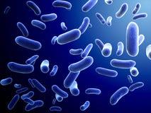 Kolonie des Bakteriums stock abbildung