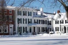 Koloniinvånaren returnerar i snö Royaltyfria Bilder