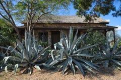 Kolonisty dom w San Ygnacio, Teksas Zdjęcia Stock