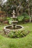 Kolonisty ogród w Peru fotografia stock