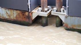 Kolonn för stolpe för pir för säkerhetsmetallstål stark i vågfloden Royaltyfria Bilder