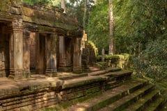 Kolonnade und Schritte des ruinierten Dschungeltempels stockbilder