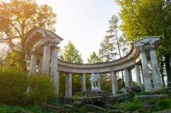 Kolonnade von Apollo am Pavlovsk-Parkgebiet in Pavlovsk, St Petersburg, Russland stockbilder