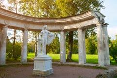 Kolonnade von Apollo- und Apollo-Monument beim Pavlovsk parken Gebiet in Pavlovsk, St Petersburg, Russland lizenzfreies stockbild
