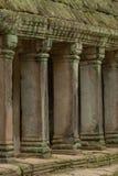 Kolonnade von Steinsäulen unter moosigem Dach stockfoto