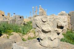Kolonndetaljen i romare fördärvar, den forntida romerska staden av Volubilis morocco Arkivbilder