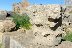 Kolonndetaljen i romare fördärvar, den forntida romerska staden av Volubilis morocco Arkivfoto