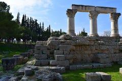 Kolonner för Corinthianbeställning i forntida Corinth Arkivfoton
