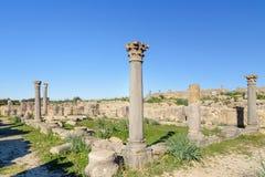 Kolonner i romare fördärvar, den forntida romerska staden av Volubilis morocco Arkivbild