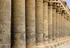 Kolonner i templet av Philae Arkivfoto