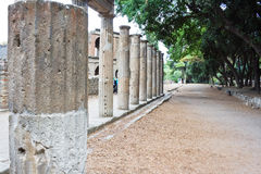 kolonner pompeii arkivfoton