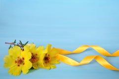Kolorów żółtych kwiaty i jedwabniczy faborek Obraz Stock