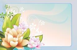kolorów kwiaty ilustracji