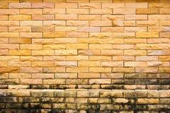 Kolor żółty ścienna cegła Zdjęcie Stock