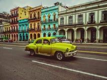 Kolor żółty Hawański zdjęcie royalty free