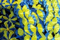 Kolor żółty i błękit kłaniamy się barwionego jak ukraińska flaga Fotografia Stock