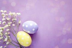 Kolor żółty i purpurowi Wielkanocni kwiaty na fiołkowym backgr jajek i białych Zdjęcie Stock