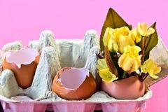 kolor żółty jajek róż kolor żółty Obraz Stock