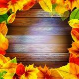 Kolor żółty jesieni mokrzy liście na tle EPS10 ilustracji