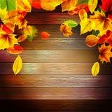 Kolor żółty jesieni mokrzy liście na tle EPS10 royalty ilustracja